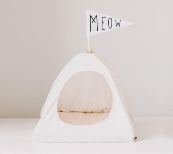tente pour chat